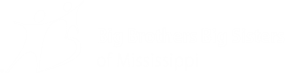 Big Brothers Big Sisters of Mississippi – youth mentoring